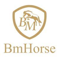 bm_horse-1
